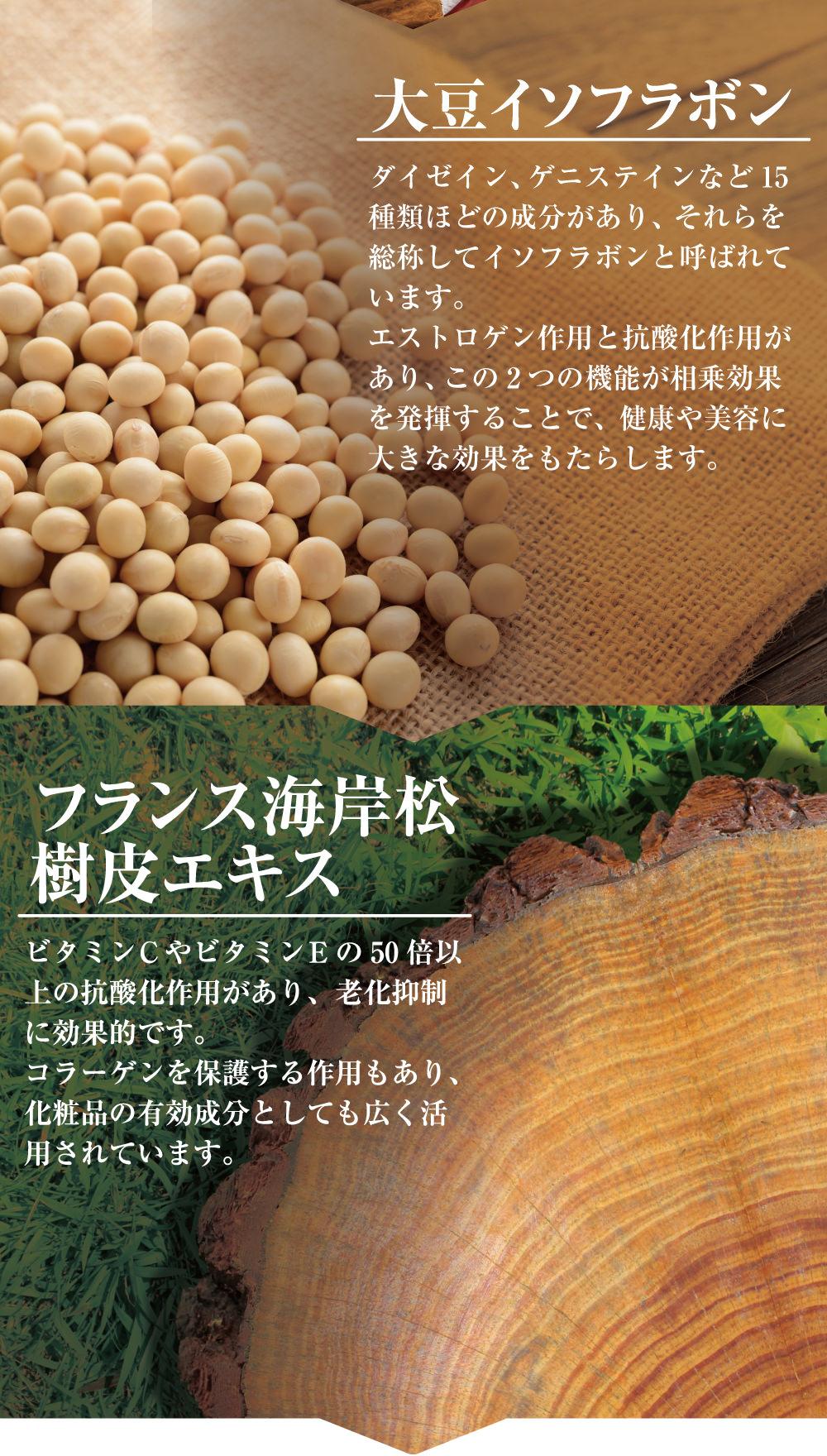大豆イソフラボ。エストロゲン様作用と抗酸化作用の機能が相乗効果を発揮することで大きな効果をもたらします!フランス海岸松樹皮エキス。ビタミンCやビタミンEの50倍以上の抗酸化作用があり、老化抑制に効果的です。コラーゲンを保護する作用もあり、化粧品の有効成分として広く活用されています。