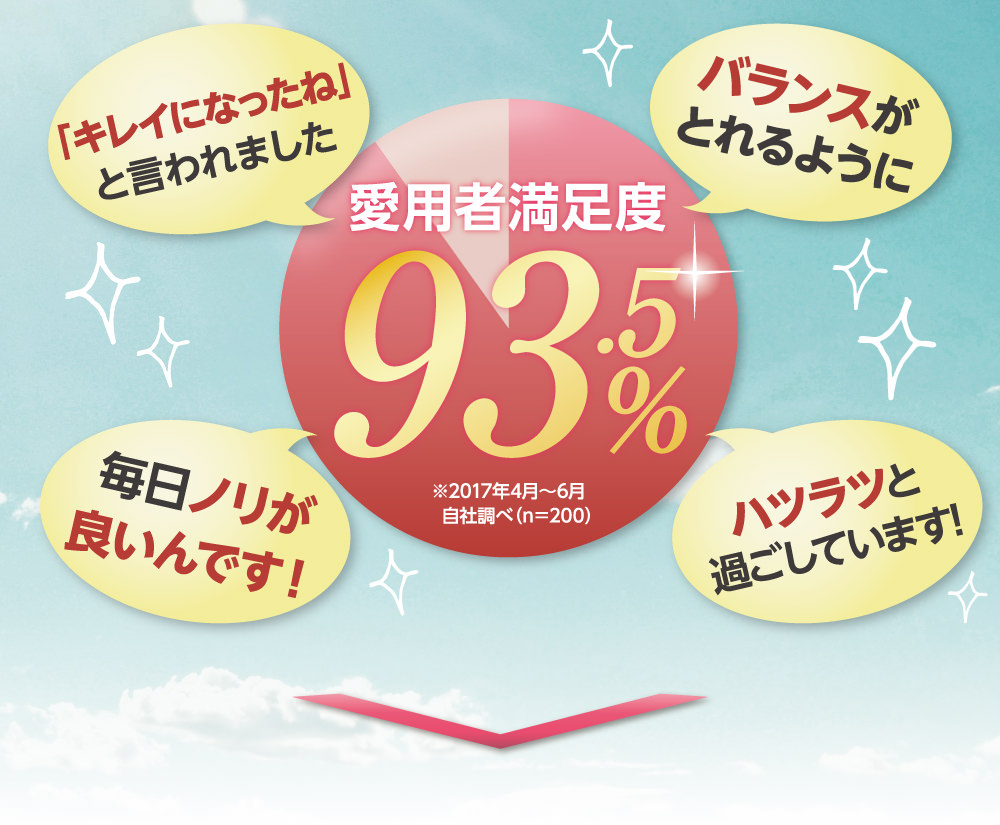 愛用者満足度93.5%