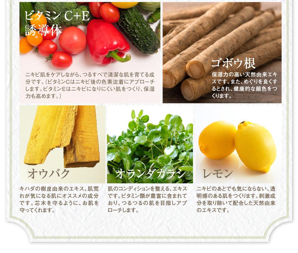 さらにビタミンC+E誘導体、ゴボウ根、オウバク、オランダカラシ、レモン。